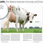 UdderOne Holstein International Article – April 2015